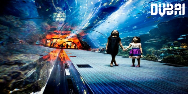 dubai aquarium and underwaterworld