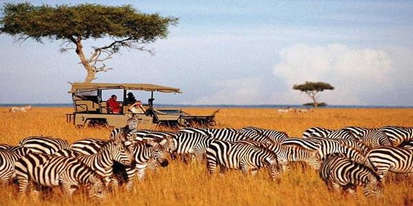 Masaai-Mara