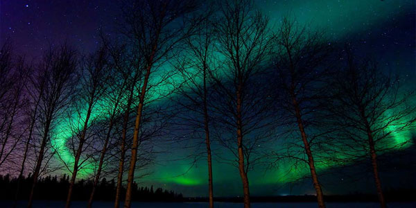 northern-lights-345